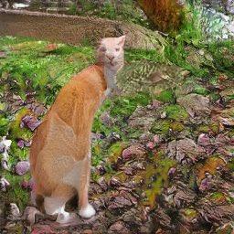 人工智慧連貓都可以開玩笑了嗎?貓嶼人可以透過人工智慧結合?