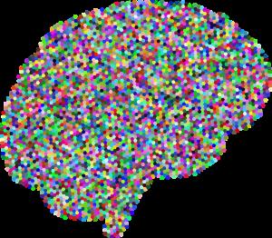 教你玩人工智慧的影像辨識工具 - Google Vision API