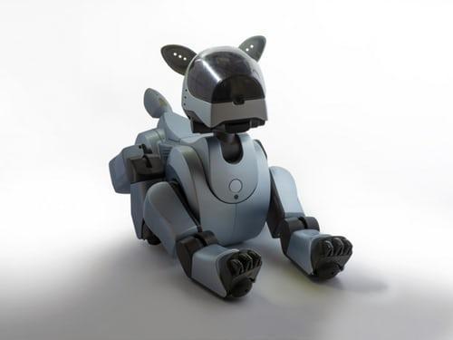 人類新忠實夥伴,具有靈魂的人工智慧機器狗