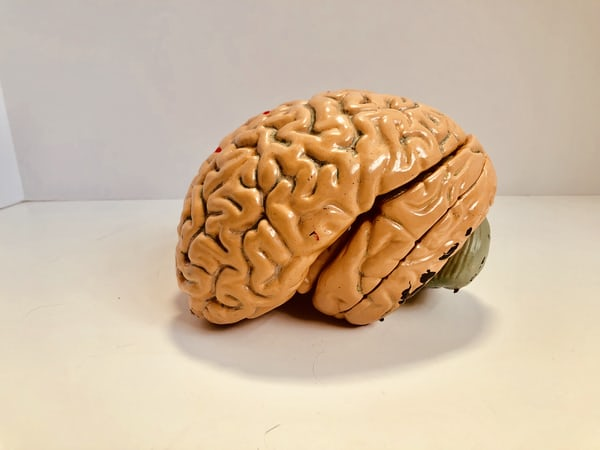 人工智慧醫療的高準確率將有助於疾病的預防!